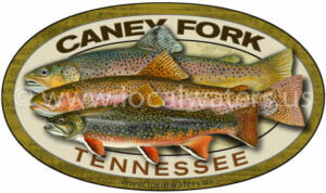 Caney Fork River Trout Fishing Sticker Grandslam Grand Slam Decal Rainbow Trout Brown Trout Brook Trout