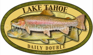 Lake Tahoe Fishing Sticker Daily Double Decal Brown Trout Rainbow Trout