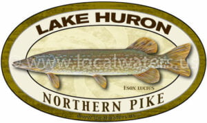 Lake Huron Northern Pike Sticker Fishing Decal Logo