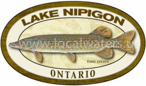 Lake Nipigon Northern Pike Fishing Sticker Ontario Decal logo