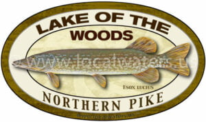 Lake of the Woods Northern Pike Sticker Fishing Decal logo