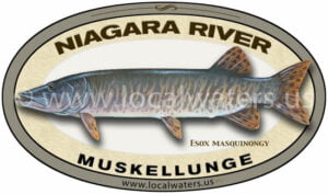 Niagara River Muskellunge Sticker Fishing Decal logo