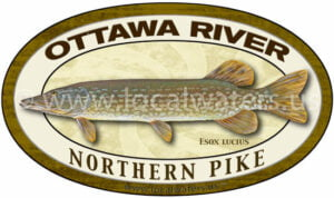 Ottawa River Northern Pike Sticker Fishing Decal Ontario Quebec Canada logo